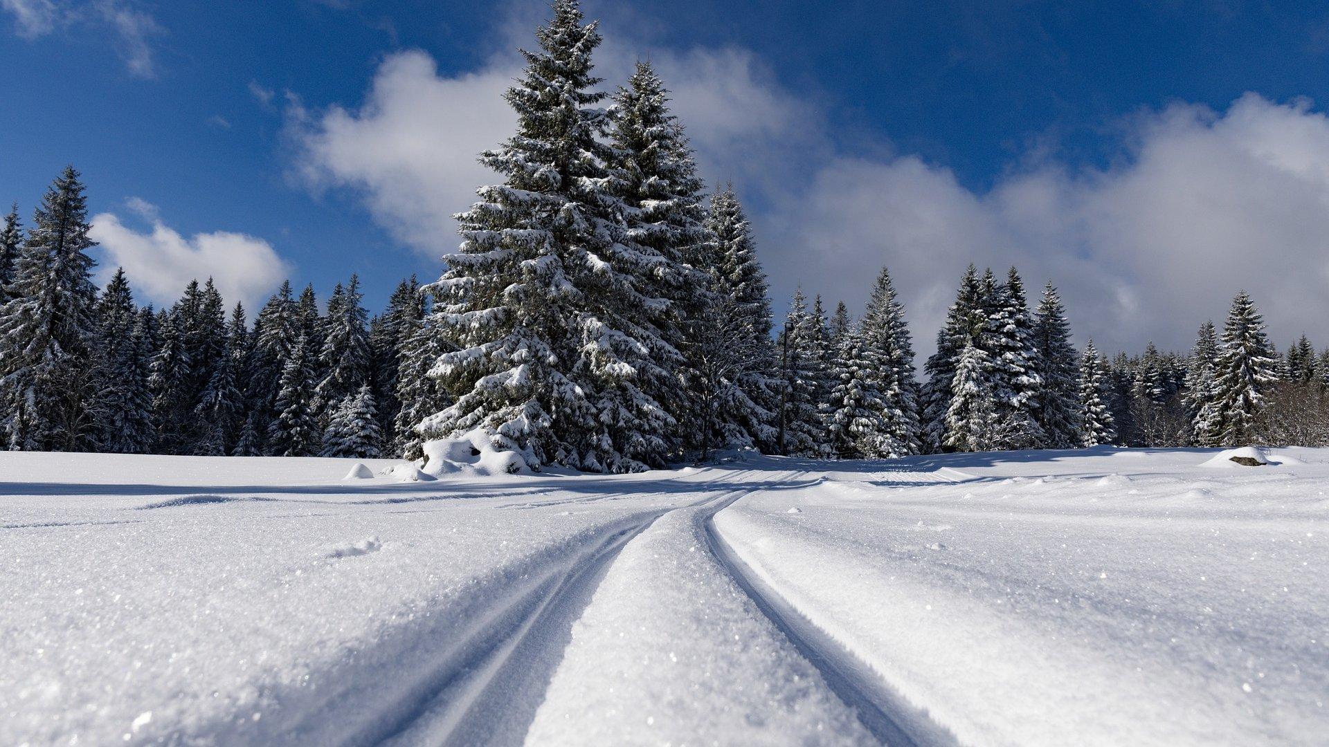 <h2>Winter auf dem Wenzelhof</h2><p>Ausgedehnter Wintersport ist auf dem Wenzelhof ebenfalls möglich. Langlauf, Abfahrt oder einfach nur mit den Kindern Schlitten fahren - ein Spass für Jung und Alt!</p><a title='Mehr lesen' href='http://www.wenzelhof.de/urlaub-im-winterparadies/'>Mehr erfahren</a>